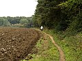 A footpath near Wauldby Manor Farm - geograph.org.uk - 565028.jpg