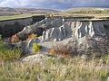 A gully (Budanova Gora) 1.jpg