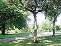 A lazy summers day in Finsbury Park - geograph.org.uk - 1470073.jpg