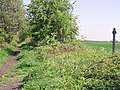 A parting of the ways, Bubwith - geograph.org.uk - 793341.jpg
