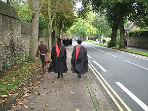 Academic dress of the University of Oxford - MA hoods seen from rear.