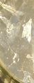 AceticAcid011.png