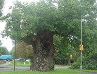 List of places in Surrey - Wikipedia, the free encyclopedia