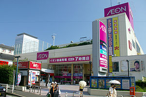 https://upload.wikimedia.org/wikipedia/commons/thumb/7/77/Aeon_ebina.jpg/300px-Aeon_ebina.jpg
