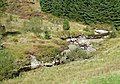 Afon Tywi and Hirnant, Ceredigion - geograph.org.uk - 1569804.jpg