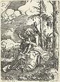 Albrecht Altdorfer, Vierge à l'Enfant.jpg