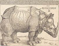 Albrecht Dürer - The Rhinoceros (NGA 1964.8.697).jpg