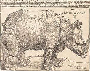 Rhinoceross