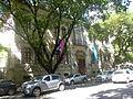 Alexius Salvador Museu de Arte da Bahia.JPG
