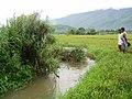 Aliso River - panoramio.jpg