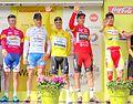 Alleur (Ans) - Tour de Wallonie, étape 5, 30 juillet 2014, arrivée (C90).JPG