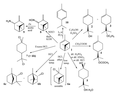 Some general reactions of α-pinene