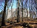 Alte Burg Neuburg 3.jpg