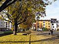 Am Alfred-Döblin-Platz.jpg