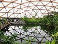 Amazonica Dome Geodetische koepel Blijdorp Rotterdam.jpg