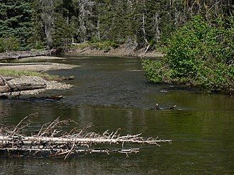 American River (Washington) - The American River along Cougar Lake Trail in the William O. Douglas Wilderness