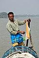 Amit Mandal - Taki - River Ichamati - North 24 Parganas 2015-01-13 4434.JPG