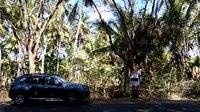 File:Anamalai road VID20180327151351.webm