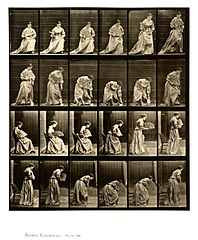 Animal locomotion. Plate 250 (Boston Public Library).jpg