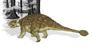 Voici un ankylosaurus.