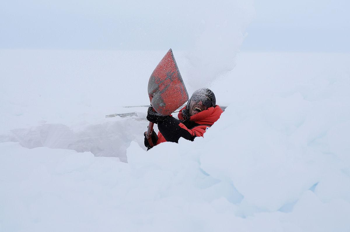 Midget digging snow