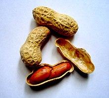 Peanut allergy - Wikipedia