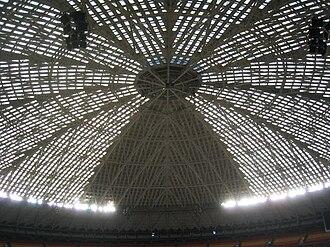 Astrodome - Astrodome Skylights