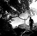 Athirappilly waterfalls along with an image of a man.jpg