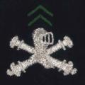 Attribut fourreaux-chars de combat.png