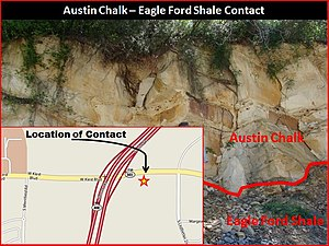 Eagle Ford Group - Outcrop of the Eagle Ford and Austin Chalk Contact off Kiest Blvd, 1/2 mile east of Patriot Pky in Dallas County
