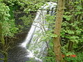 Aysgill Force, Gayle Beck. - geograph.org.uk - 25978.jpg