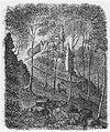 Bad Honnef Löwenburg Zeichnung 1867.jpg