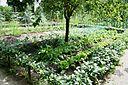 jardin potager de chantilly