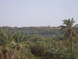 Bahariya Village through the Forest.jpg