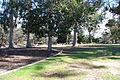 Balboa Park, San Diego, California 2 2014-03-12.jpg