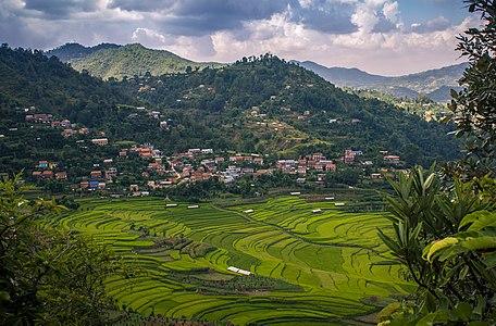 Balthali is a village in mountain region of Kavrepalanchok District.