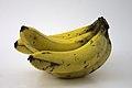 Banana dágua.jpg