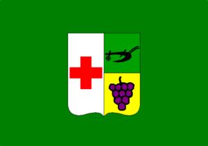 Colombo, Paraná - Image: Bandeira colombense