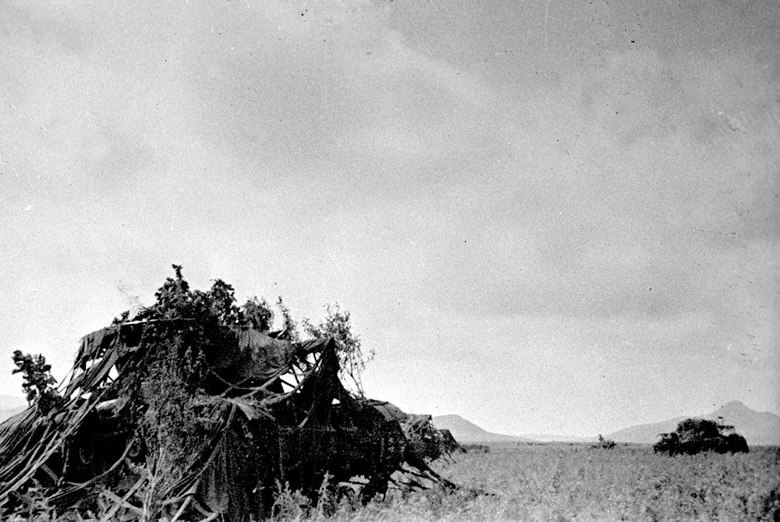 Battle of Lake Khasan-Camouflaged soviet tanks