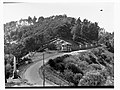 Bay Road, Mount Gambier(GN11935).jpg