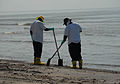 Beach Clean up during DWH (8743617563).jpg