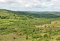 Becka Brook valley.jpg