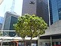 Belos Edificios a vista - Av Paulista - Sao Paulo - panoramio.jpg