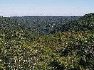 Berowra, New South Wales Suburb of Sydney, New South Wales, Australia