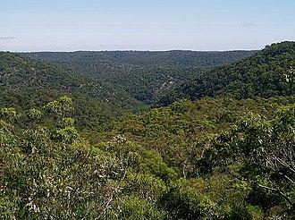 Berowra, New South Wales - Looking north over Berowra Regional Valley Park
