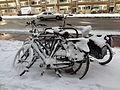 Bicycles too (snow-covered) - Stadhoudersweg - Blijdorp - Rotterdaam.jpg