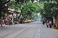 Bidhan Sarani - Kolkata 2011-10-22 6270.JPG