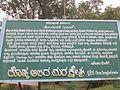 Big Banyan Tree 04.jpg