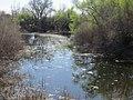 Bike path near N. Lexington Drive, Folsom, CA - panoramio (1).jpg