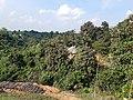 Bilaihampra Village in Tripura 01.jpg